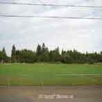 tigard oregon cook park soccer fields
