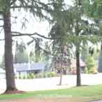 Tigard Oregon Summerfield Retirement Community Golfing